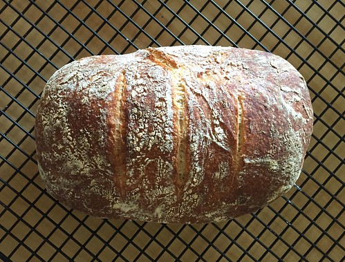 No-Knead Crusty White Bread